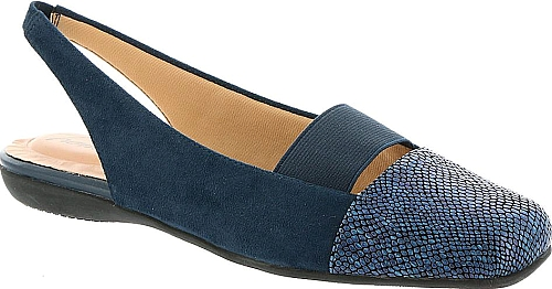 Trotters Navy